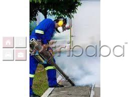 Bee removal services |Pest control company and Fumigation harare #1