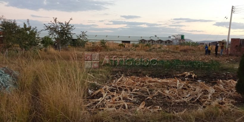 Residential land for sale in the Maranatha Park in Mabelreign #1